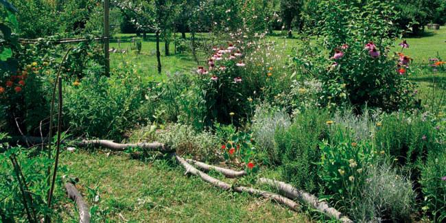 Mandala delle erbe il giardino degli aromi - L orto in giardino ...