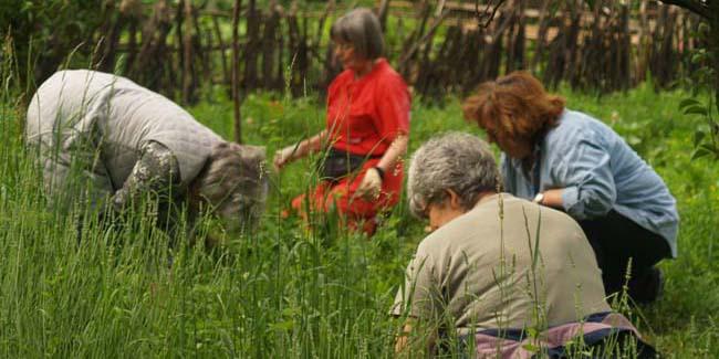 orto, giardino del benessere