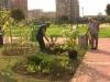 giardino-condiviso-gaetano-e-pasquale-al-lavoro